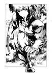 new wolverine art