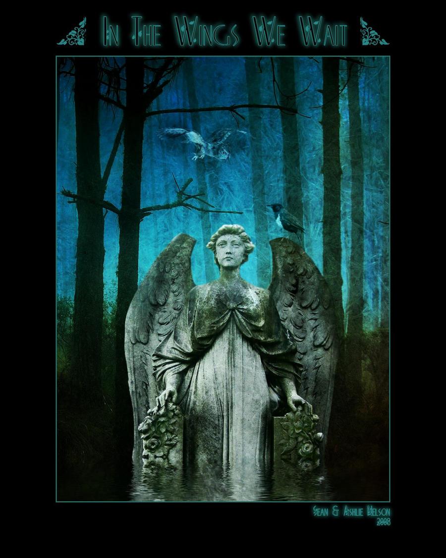 In The Wings We Wait by AshlieNelson