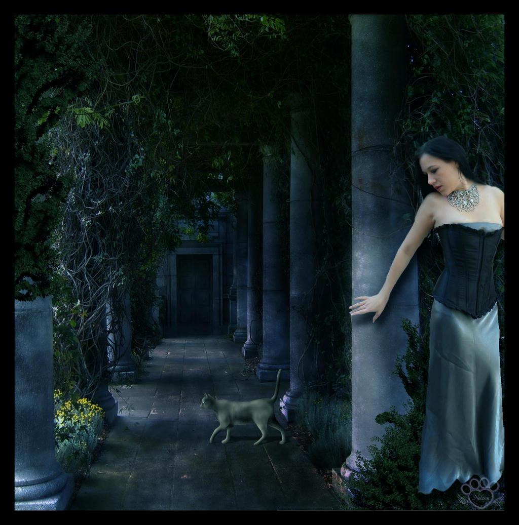 Hidden Treasures by devildoll