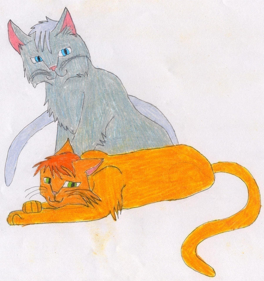 Displaying 20> Images For - Firestar And Spottedleaf Fanfiction