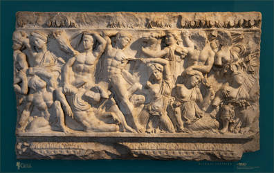The Battle of the Amazons I.