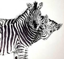 Zebra Ink