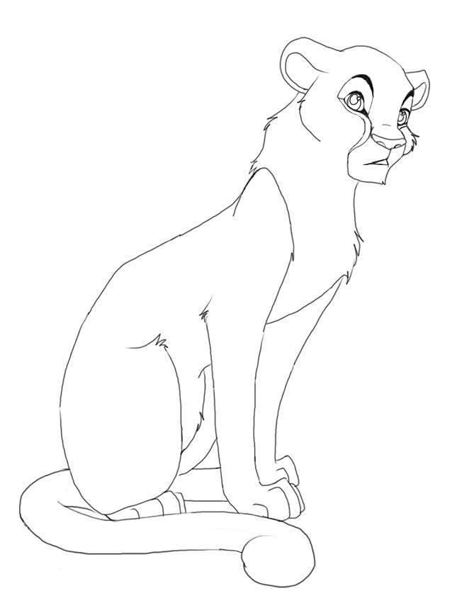 female Cheetah by Splasher91 on DeviantArt