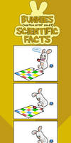 MORE bunny facts :D