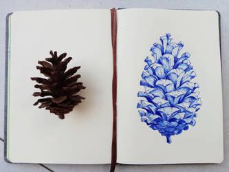 Pine Cone by SudiLin
