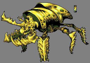 Oro Beetle