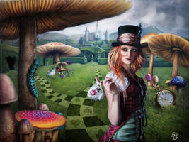 Welcome to the Land of Wonders by Alhys