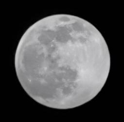 Full-Moonshot