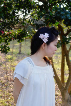 Pink Cherry Blossoms in hair