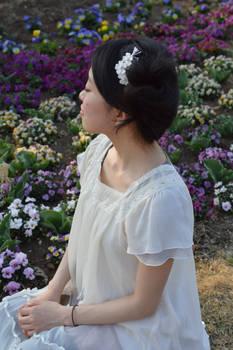 Small White Sakura in spring.