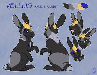Com: Vellus Ref by AlfaFilly