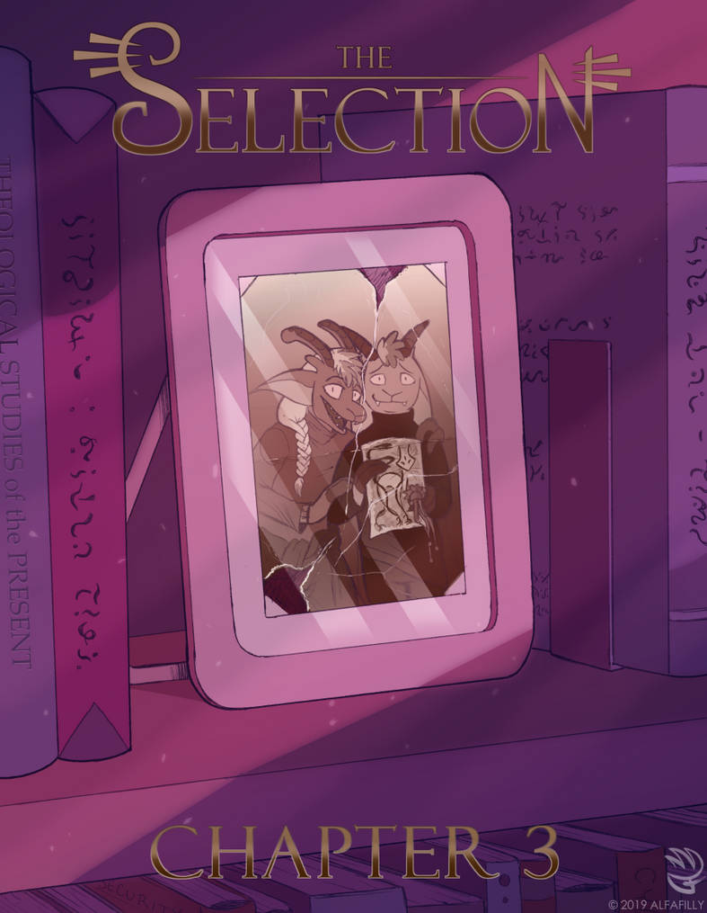 The Selection - Chapter 3