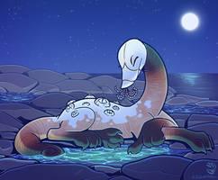 Midnight Tidepools