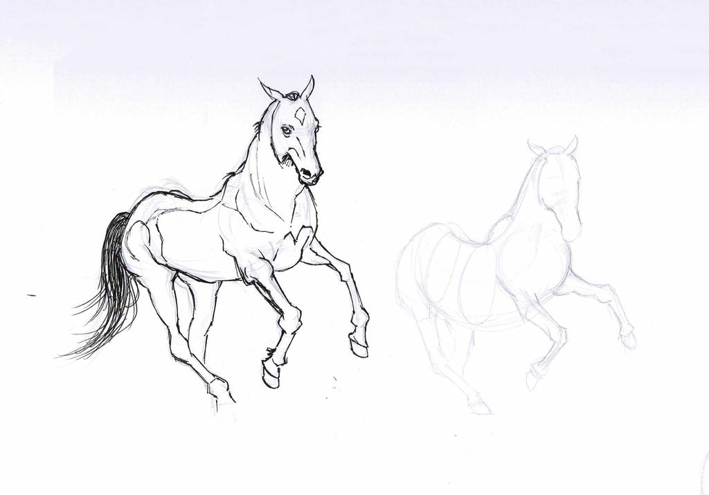 Horse sketch by TamamoMae