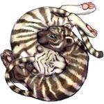 yin-yang tigers