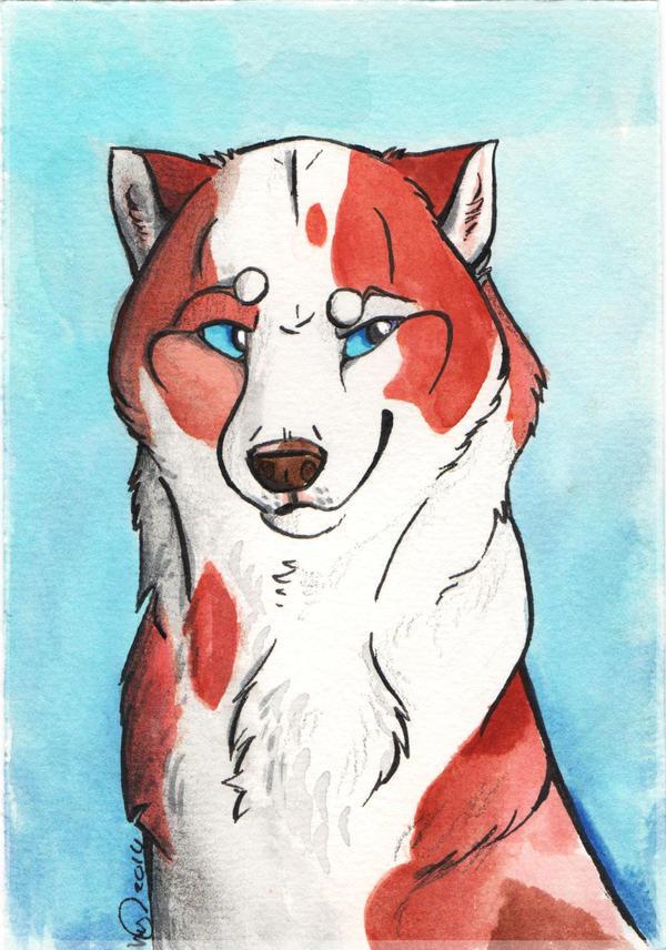Its a Husky Thing by KestrelRaptor