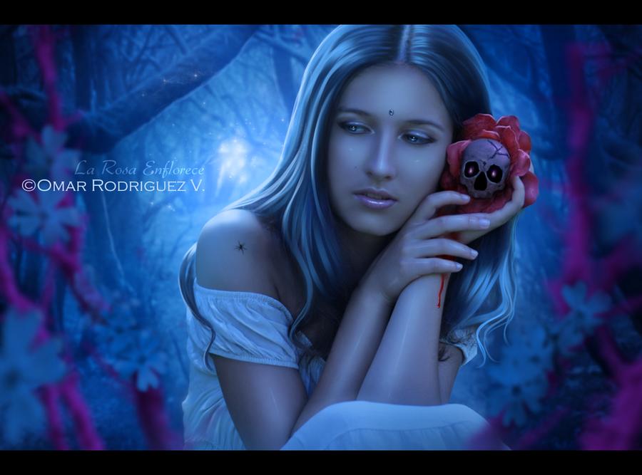 + La Rosa Enflorece + by OmarRodriguezV