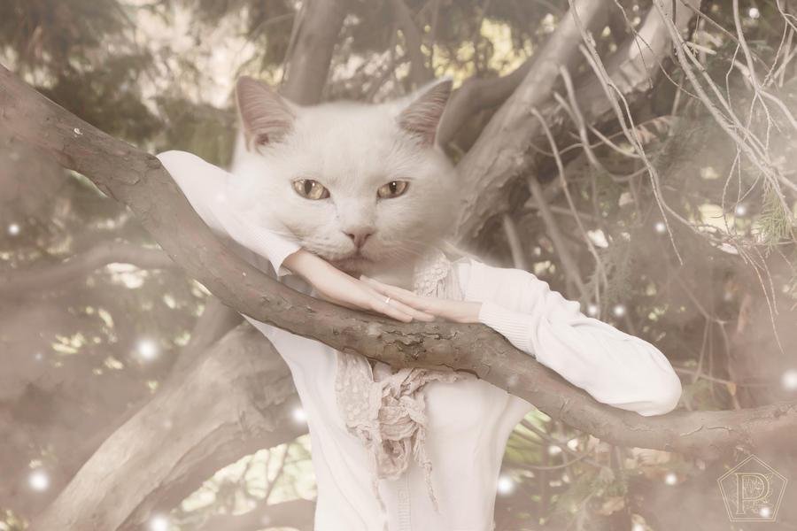 La femme chat by pendorabox on deviantart - Femme chat manga ...