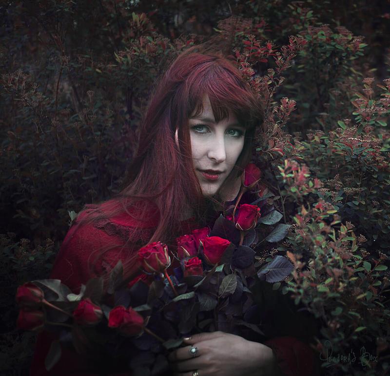 Rosa Rosa Rosam by pendorabox