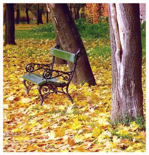I miss autumn
