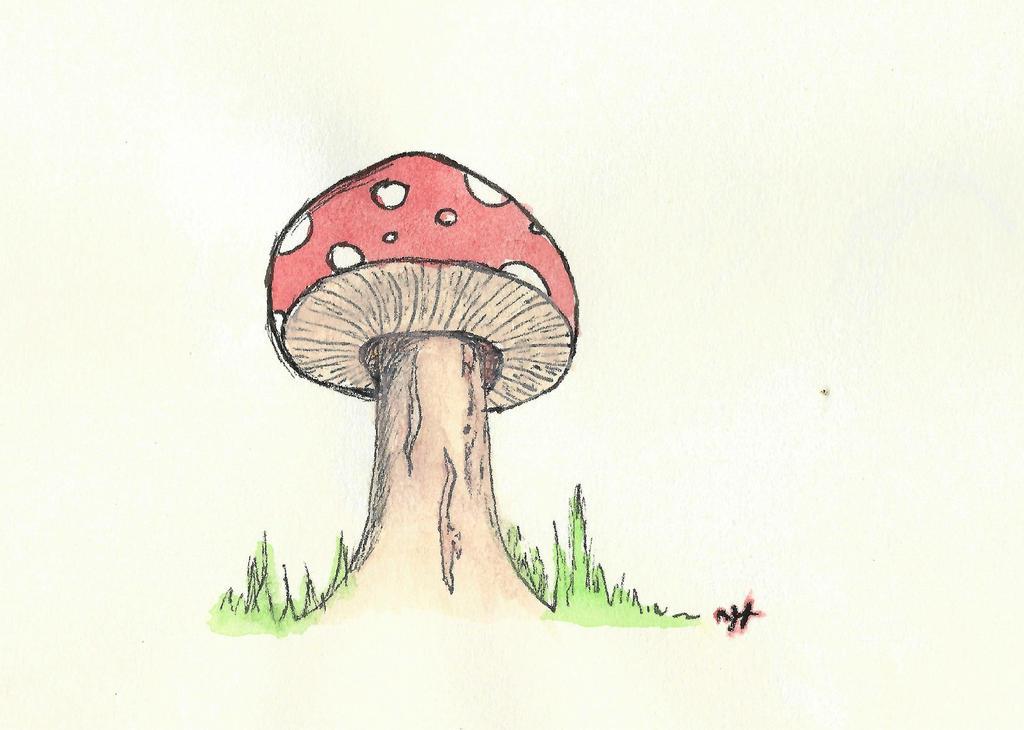 Mushroom by shadowdolphin
