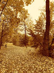 Autumn at Milsers Lake (8586) Sepia by derwahrehorst