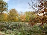 Autumn at Moated Castle Haus Boeckum (17)