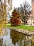 Schwerin Castle, Trees of the Love Island (20)