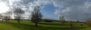 333 Trees .n Clouds, Rhine Meadows (2020-03-78)