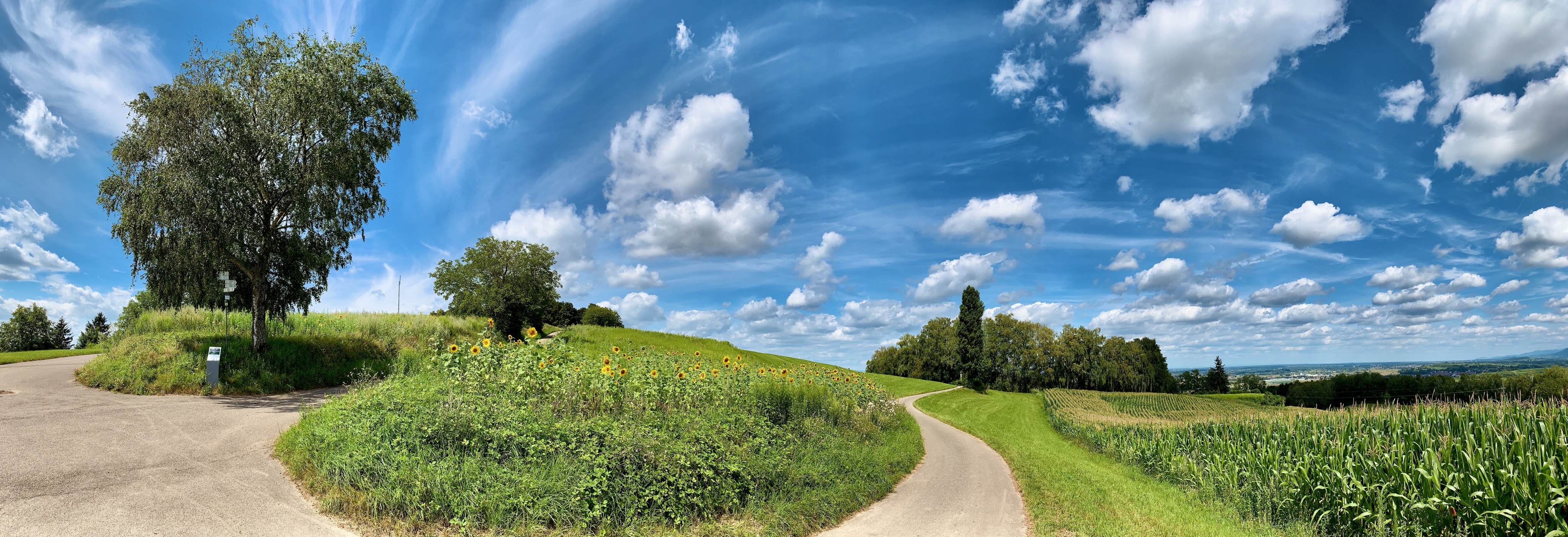 Lahr 2021, Panoramics from the Hill (3)