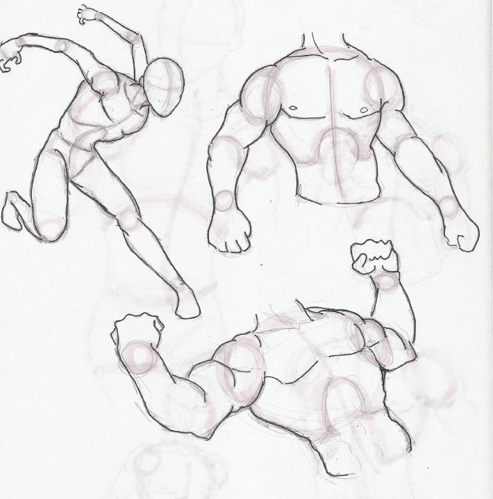 Male Anatomy Practices 2 by nekoninja3001 on DeviantArt