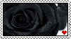 +Black rose stamp+ by Shadowa-93