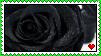 +Black rose stamp+ by Shadowa-93