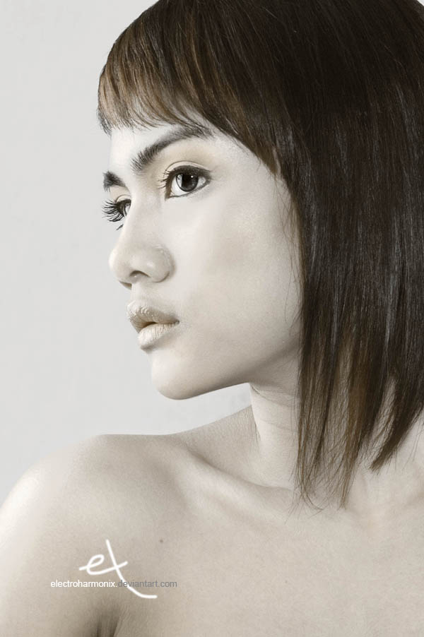 the portraits by electroharmonix