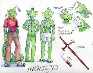 Merdejo's Reference Sheet by JcArtSpace