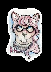 COMM: Kitterz