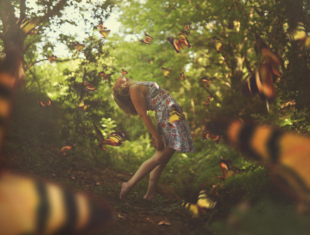 Catch The Beauty by KerenStanley