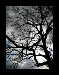 Darkness Ensues by devianb