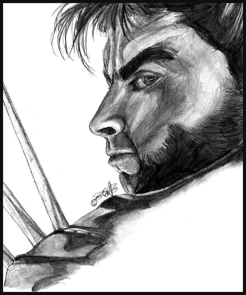 Wolverine by sanrixian