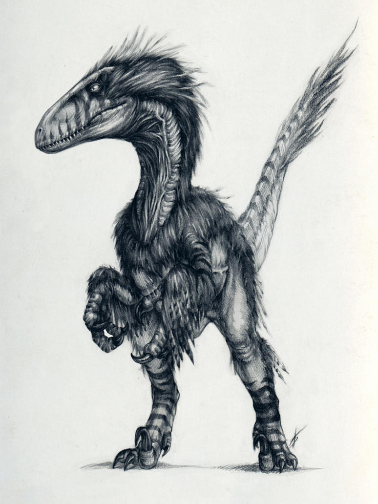 Deinonychus by AntarcticSpring on DeviantArt