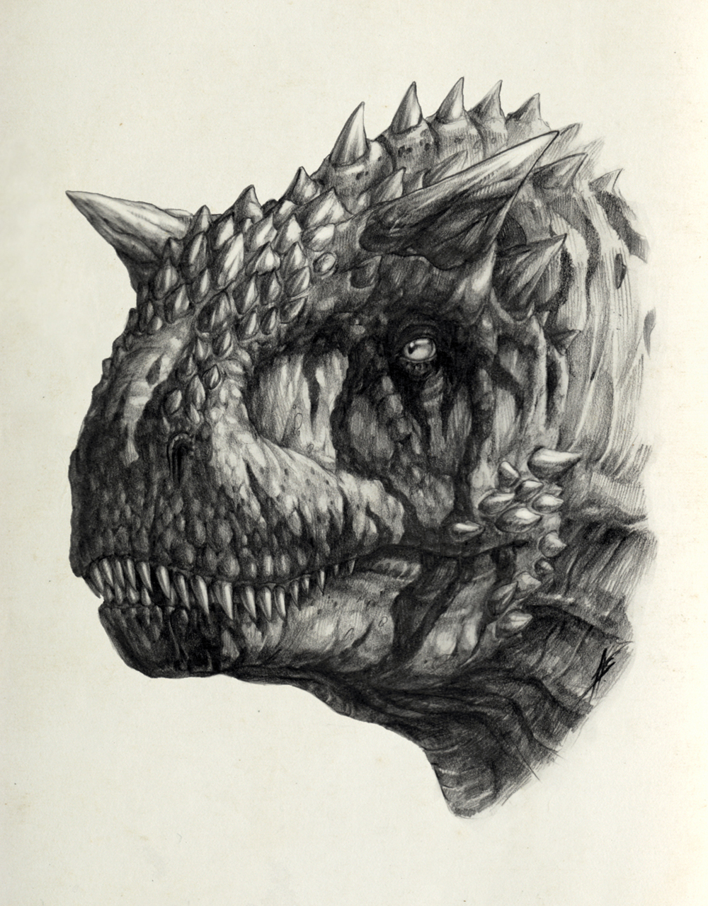 Carnotaurus III sketch by AntarcticSpring