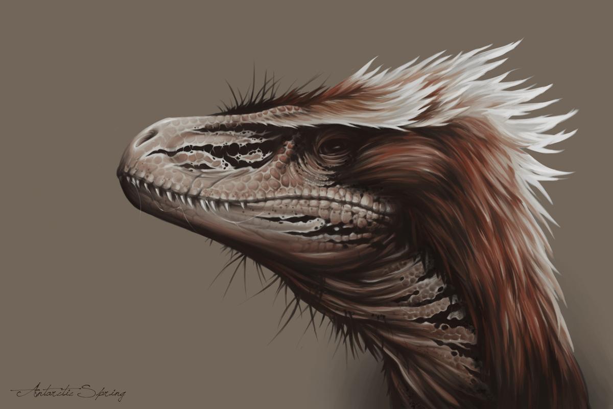 Utahraptor by AntarcticSpring