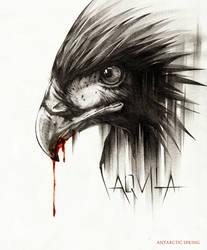 AQVILA by AntarcticSpring