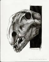 Dimetrodon by AntarcticSpring
