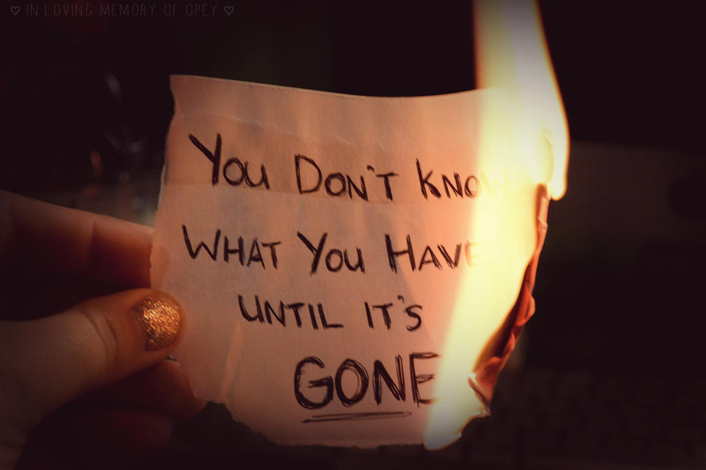 You Don'T Know What You'Ve Got Till It's Gone - Poem by Fatin Khalid