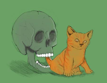 Cat and Skull?