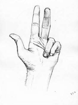 Left hand pencil drawing