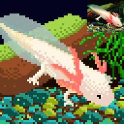 Axolotl pixelart