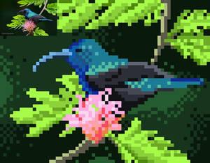 Zuphit - The Orange-Tufted Sunbird pixelart