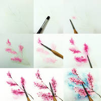 tips to color flower by Lovepeace-S